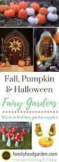 Fairy Garden Ideas by Fall Halloween Pumpkin Fairy Gardens Ideas U0026 Supplies