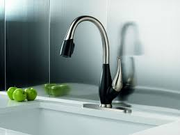 Moen Kitchen Faucets Elegant Replace Moen Kitchen Faucet Plan Best Kitchen Gallery