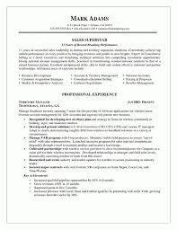 resume cv cover letter ivan sean basile digital project manager