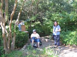 Clark Botanical Gardens Douglas Clark Botanical Gardens Painting And The