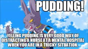 Pudding Meme - pudding meme by trishsparda87 on deviantart