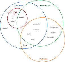 Categorize And Classify Worksheets Higher Order Thinking With Venn Diagrams