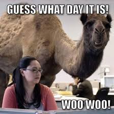 Wednesday Hump Day Meme - wednesday getting over the hump day humor from the desk of