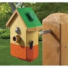 nova bird backyard bird digital camera 145921 bird houses