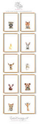 wall ideas the stylist wear crown for beauty art wall sticker woodland animals safari animals nursery art from the crown prints on etsy available as crown canvas