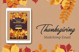 thanksgiving mailchimp eblast email templates creative market