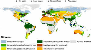 biomes map locations of cropland data points biome map adapted from et