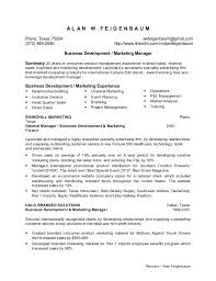 Chef Resume Objective Cheap Dissertation Proofreading For Hire For Masters Media Planner
