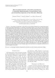 the sea turtle barnacle chelonibia testudinaria cirripedia