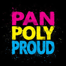 Poly Flag Pan Poly Proud Flag Colors