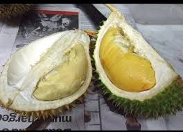 which food plant was native to the old world 14 bizarre fruits from around the world huffpost