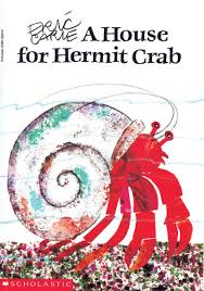 homes for hermit crabs scholastic