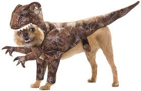 amazon enigmas behold the horror of halloween dog costumes