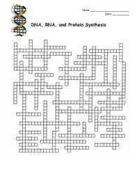 Dna Rna And Protein Synthesis Worksheet The 25 Best Rna Polymerase Ideas On Molecular Biology