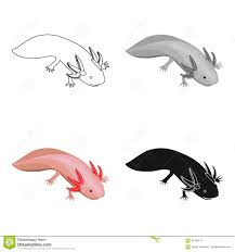 mexican axolotl icon in cartoon style isolated on white background