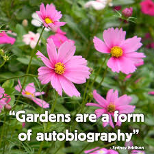 25 best funny garden signs ideas on pinterest garden signs