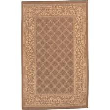 Couristan Outdoor Rugs 32 Best Area Rugs Images On Pinterest Area Rugs Carpets And