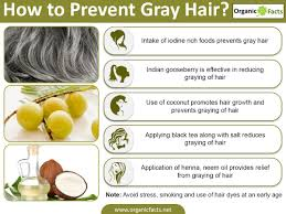 premature gray hair causes home remedies u0026 treatments organic