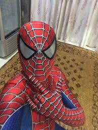 amazing spiderman costumes halloween 16081209 cosercosplay com