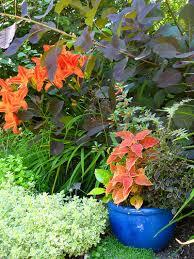 Flower Pot Arrangements For The Patio Solve Your Garden Border Dilemmas With Planted Pots