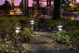desert steel solar lights cheap home and garden ideas and tips for the every day diy gardener