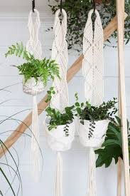 Hanging Indoor Planter by 636 Best Green Just Plants Images On Pinterest Plants