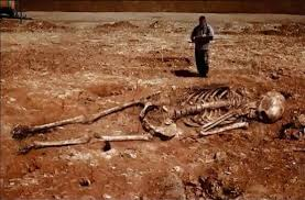 5 meters to feet iran archeologists discover 5 meters tall human skeletons