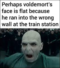 Hermione Granger Memes - voldy memes harry potter amino