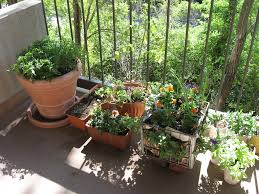 Modern Balcony Planters by Captivating Balcony Garden Ideas On Potted With Herb And Vegetable