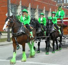horses at the 2013 cleveland st patrick u0027s day parade