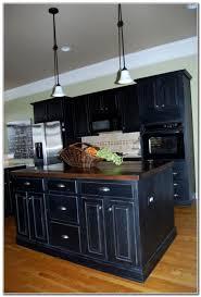 Paint Kitchen Cabinets Nashville Tn Download Page  Best Home - Kitchen cabinets nashville
