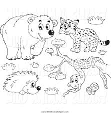 royalty free stock wildlife designs of coloring book pages