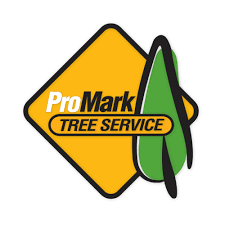 fall grass mowing when do we stop mowing promark landscaping