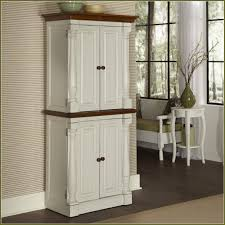 Tall Kitchen Storage Cabinets How To Build A Tall Pantry Cabinet Best Home Furniture Decoration