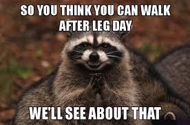 Quad Memes - oh my quad the art of training legs the karachiite