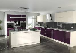 interesting kitchen design with wooden floor and purple wall paint