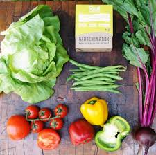 can a u0027garden in a box u0027 help south africans grow more food with