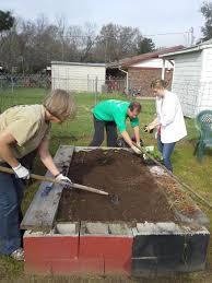 Community Gardens In Urban Areas Community Gardens Bring Nutritious Food Options To Urban Areas