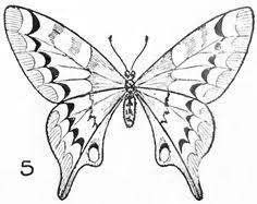 butterfly drawings in color it up with colored pencils or