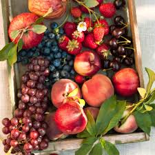 the best fruits to plant in cold weather sunset