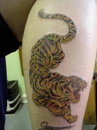 beautiful tiger on leg