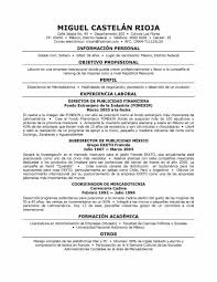 examples of resumes professional resume template singapore in