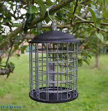gardman fat snax fort feeder for wild birds in excess direct