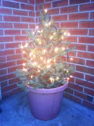best istock 14036626 lights front yard winter