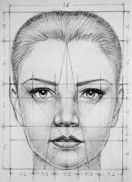 drawn profile face proportion pencil and in color drawn profile