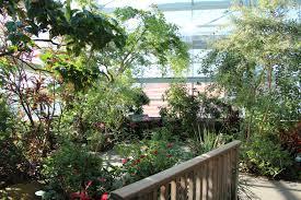 file butterfly garden tenn aquarium jpg wikimedia commons