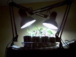 Creative Lighting Fixtures Creative Lighting For Seed Starting U2013 The Garden Professors