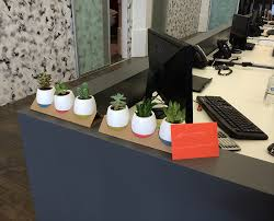 Decorate Your Cubicle 6 Ways To Make Your Cubicle Look Less Like A Prison Cell Modernize