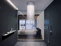 Rain Shower Head With Handheld Interactive Best Rain Shower Head With Handheld Design Of