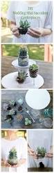 best 25 succulent centerpieces ideas on pinterest succulent